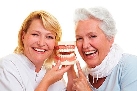 protose-dentaria